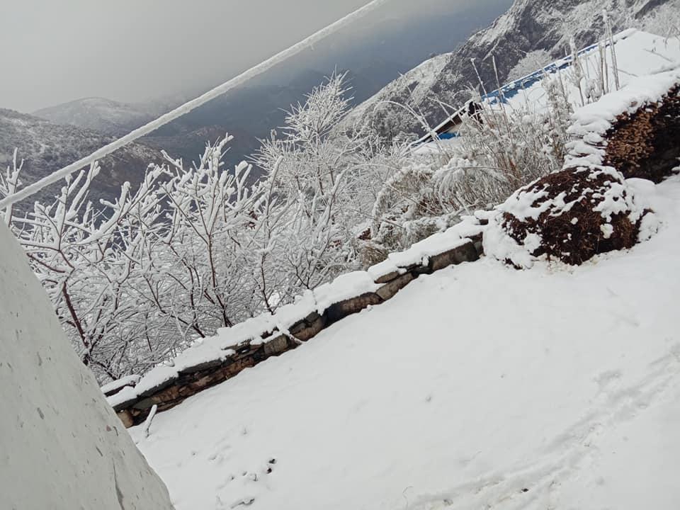 Photo: NK